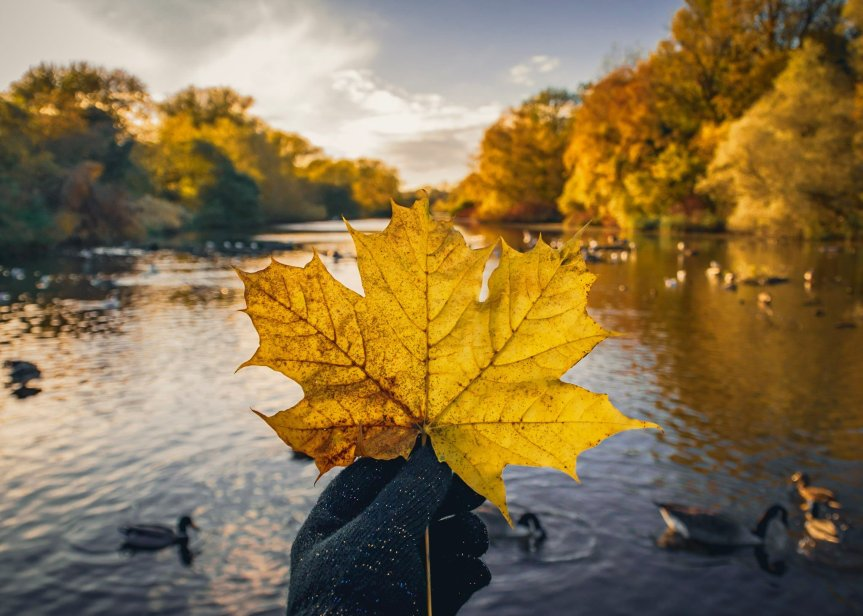 Awesome things to do in Coventry and Warwickshire thisAutumn!